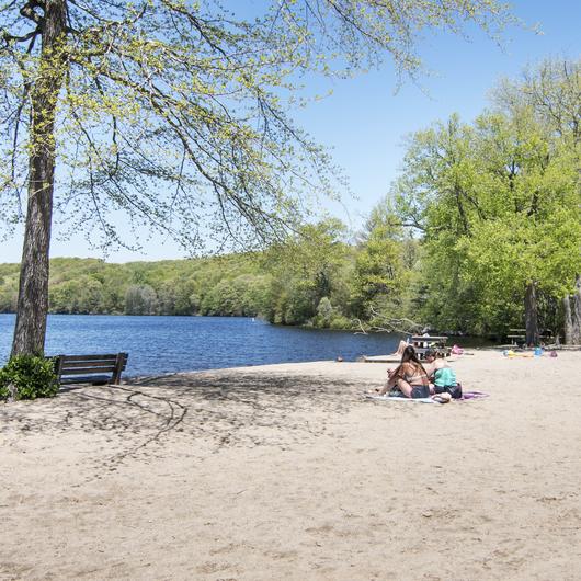 Cedar Lake Beach