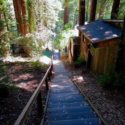 Mill Valley's Old Mill Park and the Dipsea Steps