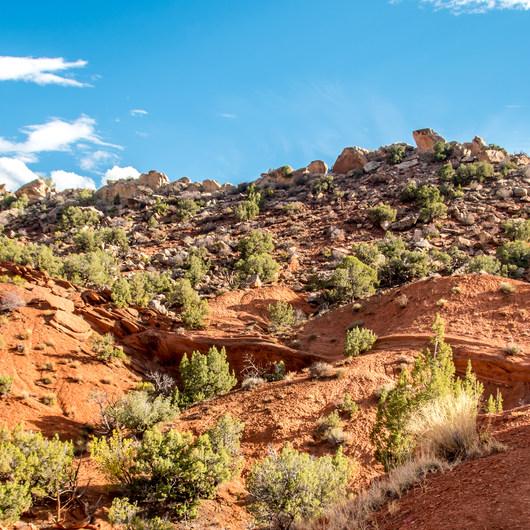 Desert Voices Trail