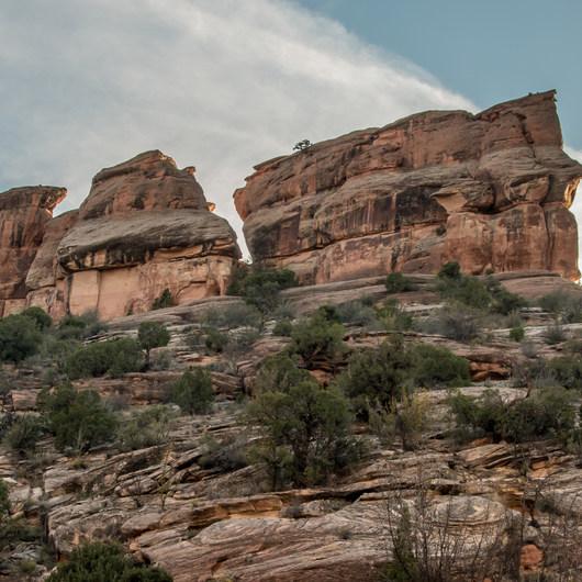 Colorado National Monument Fruita Co: 18 Road Mountain Bike Trails: Zippity-Do-Dah