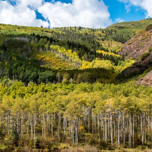 West Brush Creek Trail Hike
