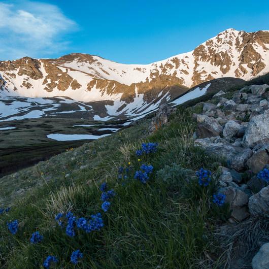 Grays Peak + Torreys Peak