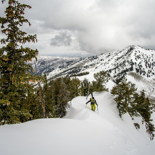 Mount Raymond Backcountry Skiing