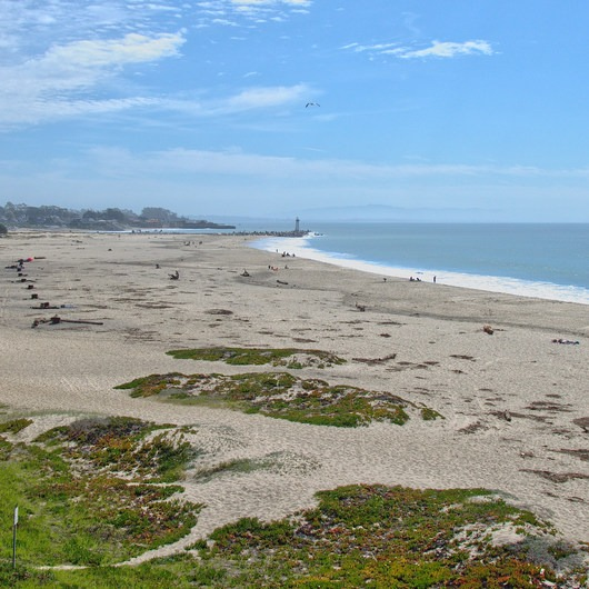 Seabright Beach