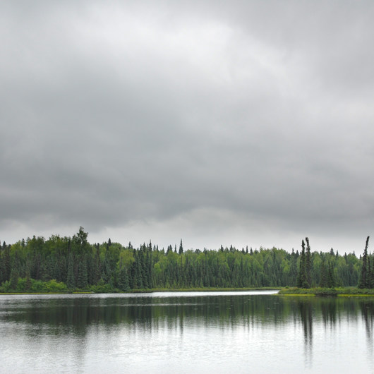 Nancy Lake Canoe Trail, Lynx Lake Loop
