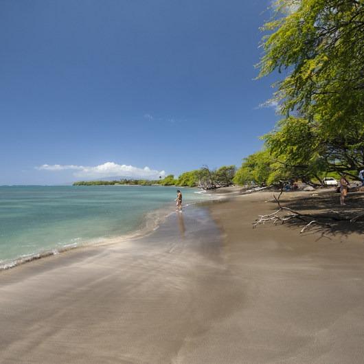 Olowalu Reef + Ka'ili'ili Beach