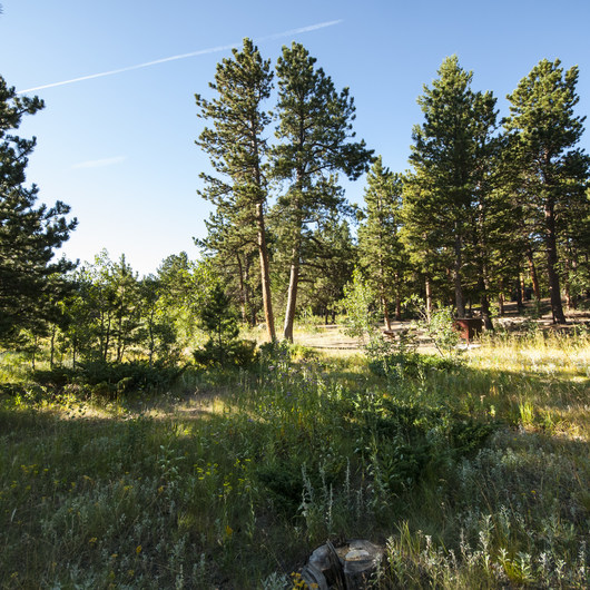 Olive Ridge Campground