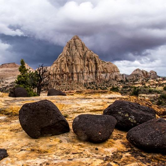 Rim Overlook + Navajo Knobs Trail