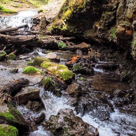 Parfrey's Glen Natural Area