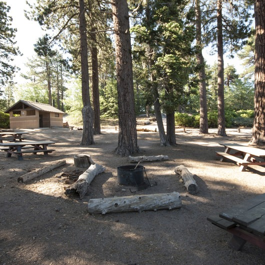 Shady Cove Group Campsites