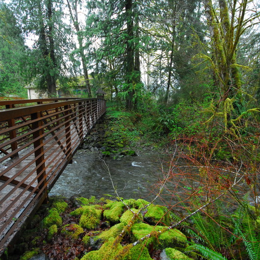 Lake Quinault, Falls Creek Campground