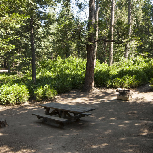 Dogwood Family Campground