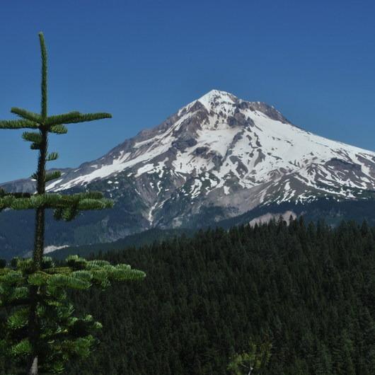 Zig Zag Mountain via the Horseshoe Ridge Trail