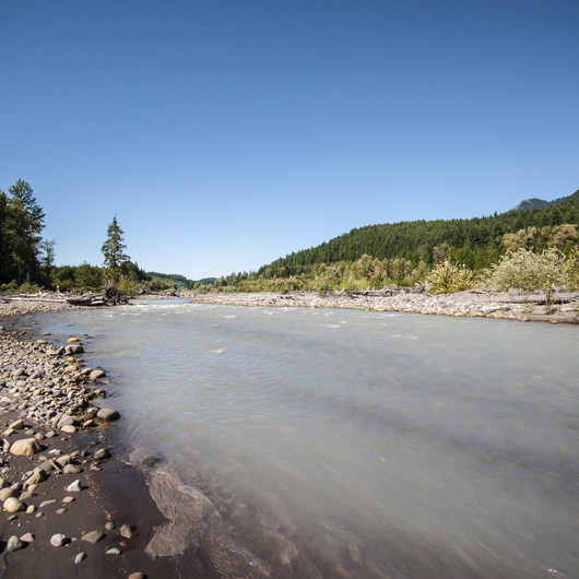 Nisqually River Campsite
