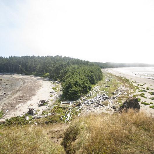 Ozette, North Sand Point Trail
