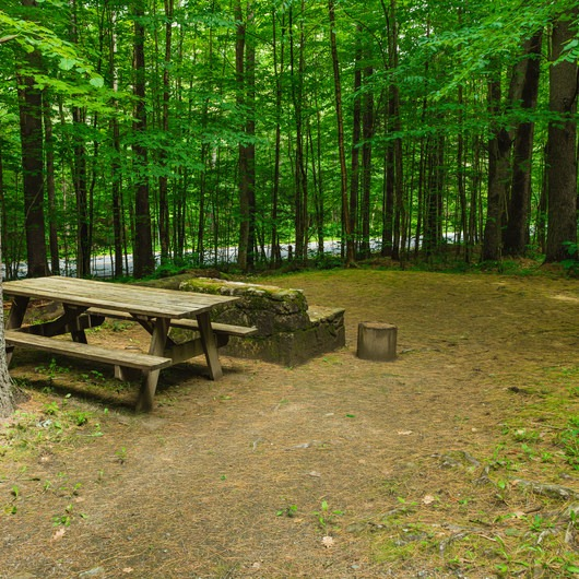 Mount Ascutney State Park Campground