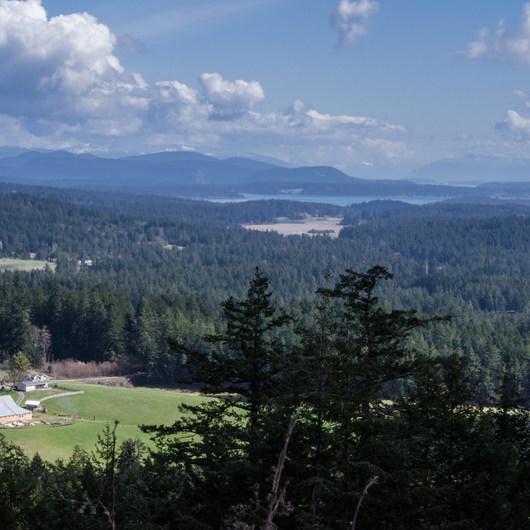 Mount Grant Preserve