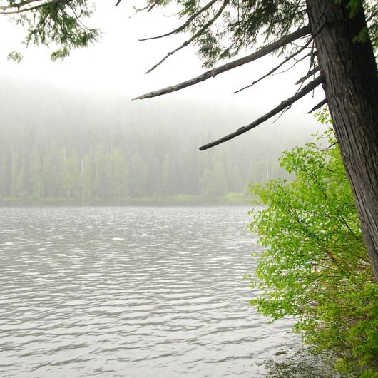 Lost Lake Lakeshore Trail