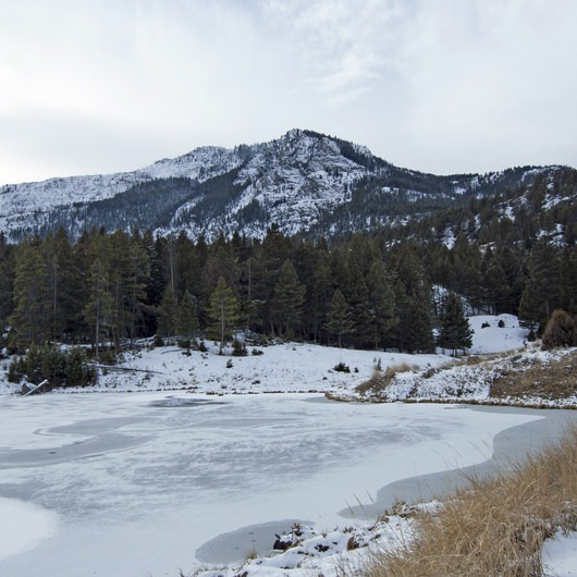 Beaver Ponds Loop