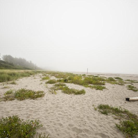 Hobuck Beach, Makah Bay