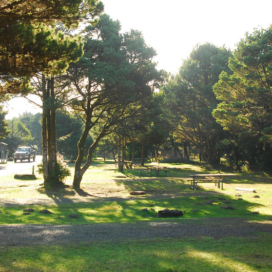 Twin Harbors State Park Campground