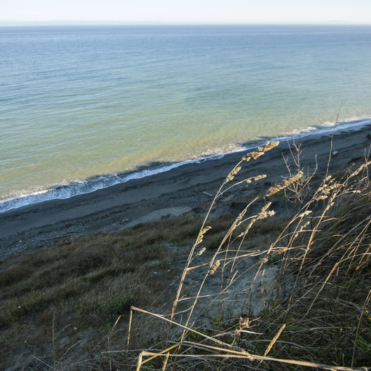 Dungeness Recreation Area Campground