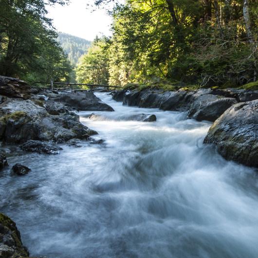 Sol Duc River Salmon Cascades