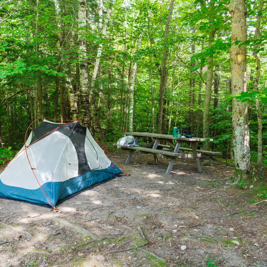 AMC's Cardigan Campsites