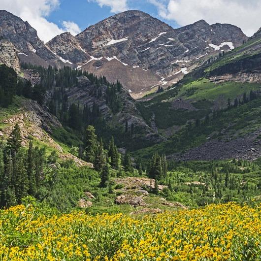 Broads Fork Trail