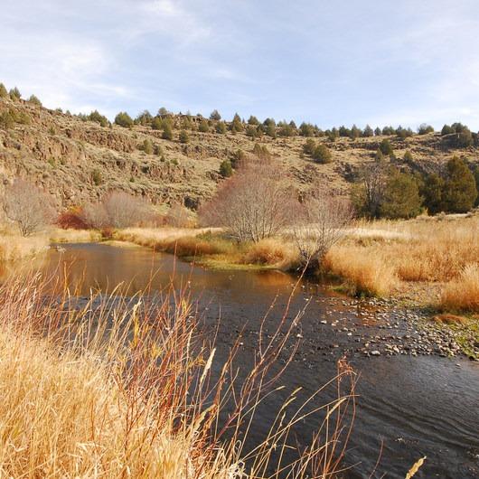 Donner und Blitzen River Trail Hike