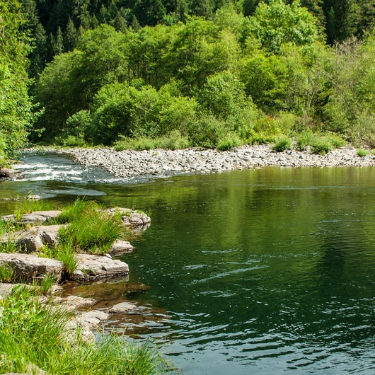 Day Use Site 4: Molalla River Swimming