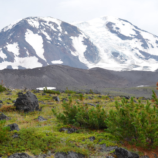 Mount Adams: High Camp via Killen Creek