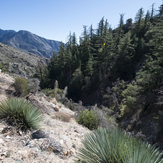 Devils Canyon Trail Hike