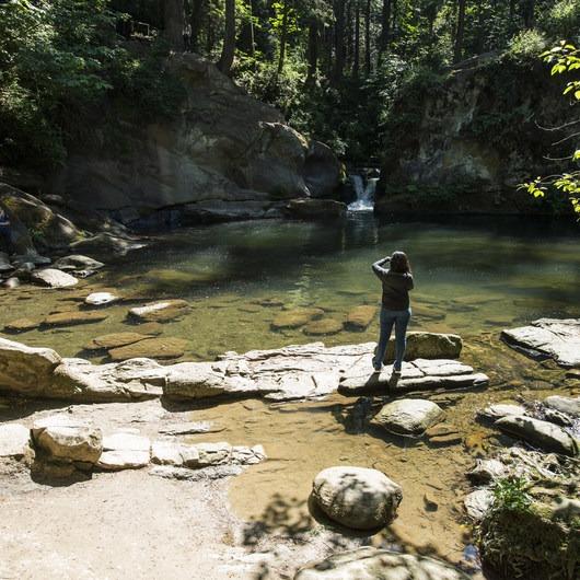 Whatcom Falls + Whirlpool Falls