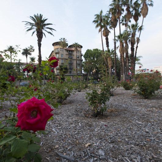 Pasadena Central Park