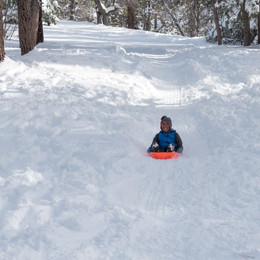 Aspen Glen Picnic Area Sledding