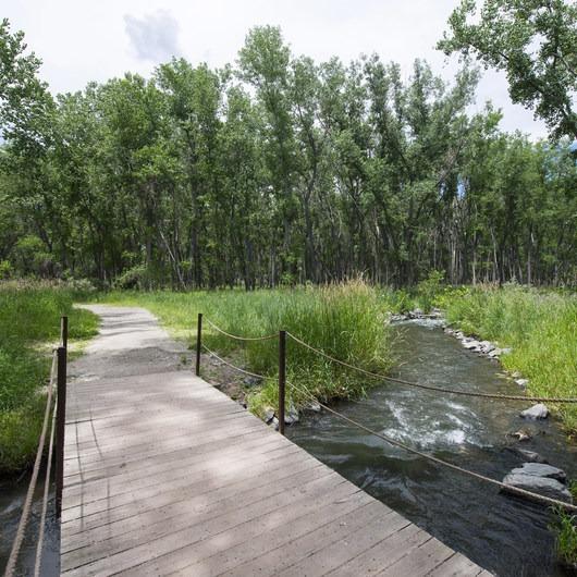 Wetland Loop Trail Hike