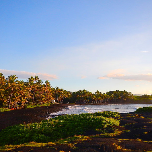 Punalu'u Black Sand Beach Campground
