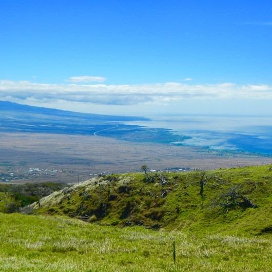 Pu'u O Umi Natural Area Reserve