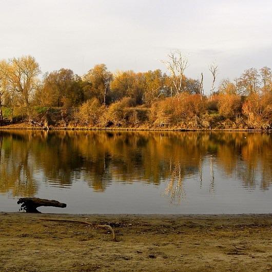 Sutter's Landing Regional Park