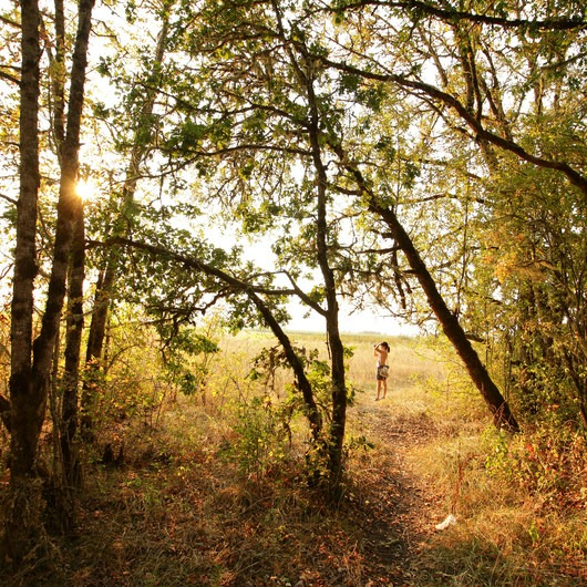 Fern Ridge Wildlife Area, West Coyote Unit