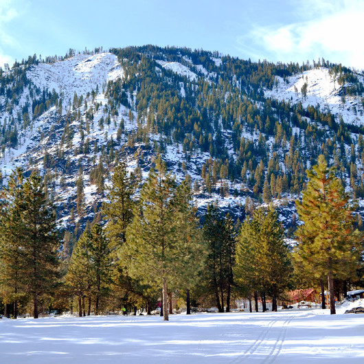 Icicle River Trails