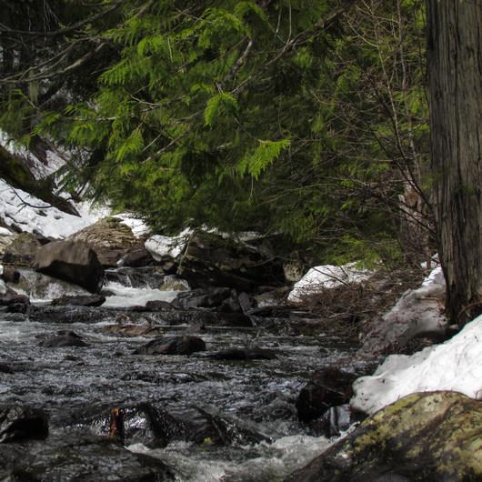 Chiwaukum Creek