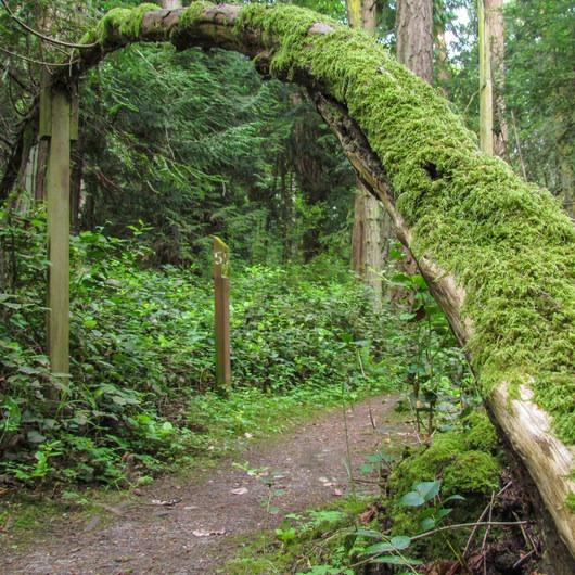 Al Emerson Nature Trail