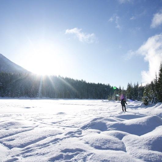 Mardee Lake Snowshoe