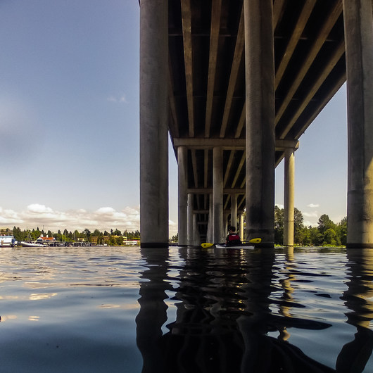 Portage Bay Sea Kayaking