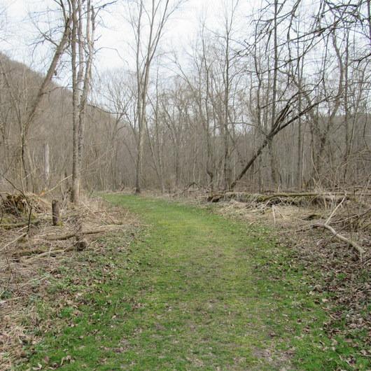 Beaver Creek Valley Trail