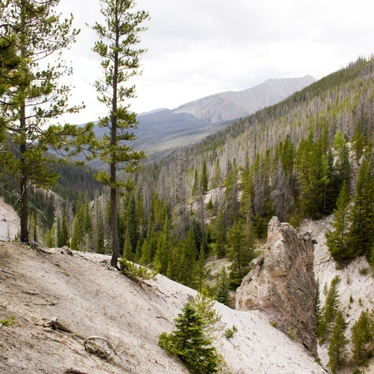 Little Yellowstone via the La Poudre Pass Trail