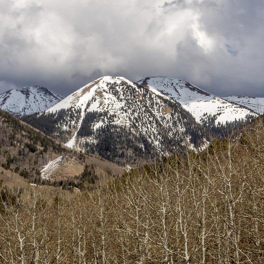 La Sal Mountains Scenic Loop