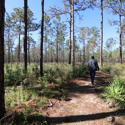 Silver Springs State Park Hiking Trails